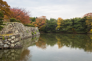 A scene from the moat of Himeji castle in Japan with autumn colors of the leaves and reflection in water