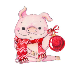 Chinese Year of the pig.