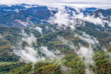 Aerial view of foggy green mountain
