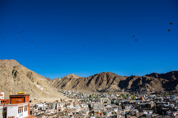 View of Leh city, Ladakh, India.