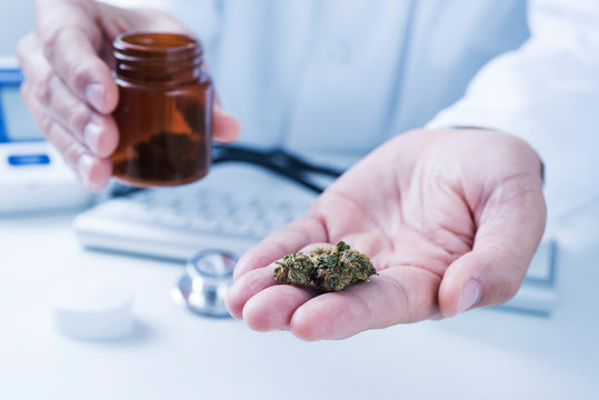 doctor man with some marijuana buds in his hand