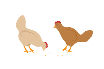 Hens Eating Seeds Vector Set in Cartoon Style