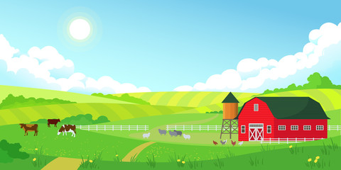 Colorful farm summer landscape, blue clear sky with sun, red barn, herd of cows, agriculture, flat style vector illustration