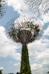 Wall Mural - Gardens by the bay
