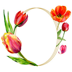 Amazing red tulip flower with green leaf. Watercolor background illustration set. Frame border ornament round.