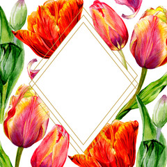 Amazing red tulip flower with green leaf. Watercolor background. Frame border crystal. Geometric shape.