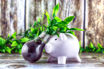 Piggy bank and plant growing inside the light bulb. Green eco energy concept. Electricity prices, energy saving.