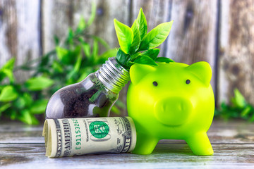 Piggy bank, one dollar banknote and plant growing inside the light bulb. Green eco energy concept. Electricity prices, energy saving.