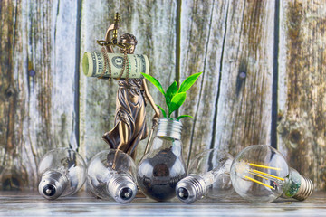 Plant growing inside the light bulb, symbol of law and justice and one dollar banknote. Green eco energy regulations concept.