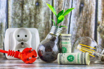 Plug, one dollar banknotes and plant growing inside the light bulb. Green eco energy concept. Electricity prices, energy saving.