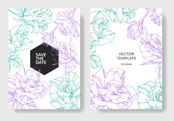 Vector Rose. Wedding background card engraved ink art. Thank you, rsvp, invitation elegant graphic set banner.
