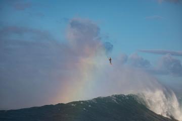Massive waves from Maui