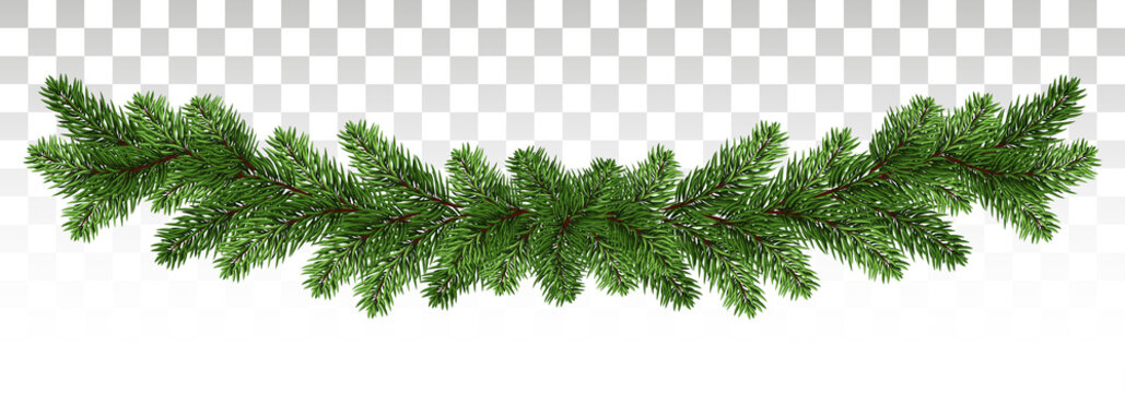 A long garland of pine branches. Pine frame. Holiday winter decorations. Vector. epc10