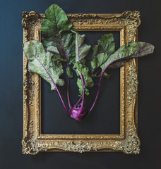 Kohlrabi in a picture frame