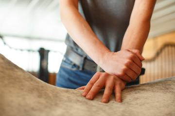 Equine Chiropractor Hands