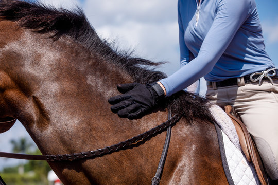 Woman Petting Horse on the Neck