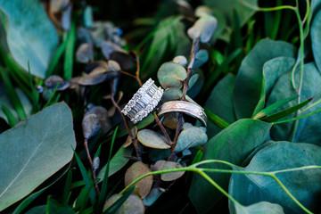 Wedding rings on greenery