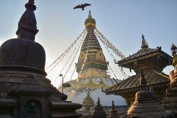 ネパールのカトマンズ 世界遺産のスワヤンブナート寺院 顔が描かれたストゥーパと歴史的な建物