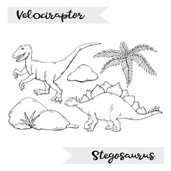 Vector Velociraptor and Stegosaurus isolated on a white background