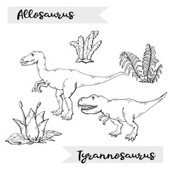 Vector Allosaurus and Tyrannosaurus with plant and stone over white.