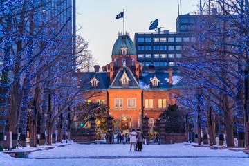北海道の冬 札幌 北海道道庁ライトアップ