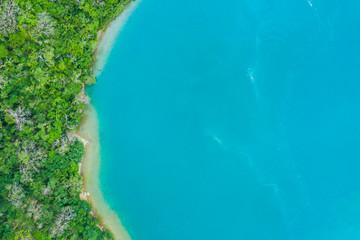 澄んだ海と自然豊かな陸地の航空写真