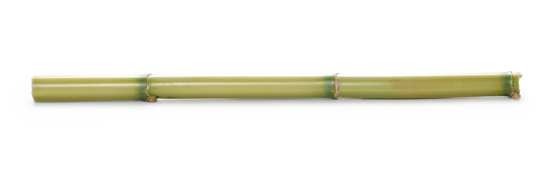 Green bamboo sticks isolated on white background, side view