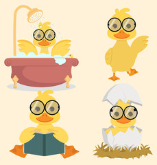 Cute Baby duck collection set