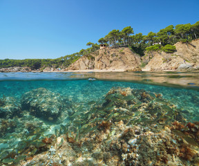Mediterranean coast in Spain with a shoal of fish underwater sea, split view half above and below water surface, Cala Bona, Palamos, Costa Brava