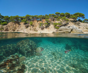 Spain Mediterranean coast with fish, sand and rocks underwater sea, split view half above and below water surface, Cala Bona, Palamos, Costa Brava