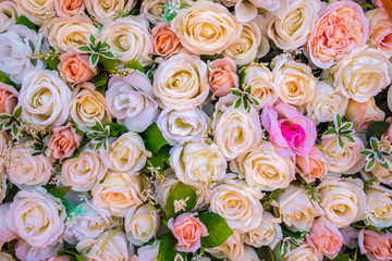 rose flowers background,flowers for wedding