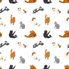 Colorful seamless pattern with cats of different breeds sleeping, walking, washing, stretching itself on white background.Vector illustration in flat cartoon style for wrapping paper, fabric print.