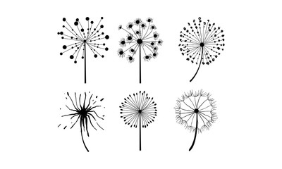 Vector set of 6 dandelions in linear style. Flower with fluffy seeds. Floral theme