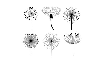 Vector set of 6 linear dandelion flowers with fluffy seeds. Floral theme. Decorative elements for postcard or notebook