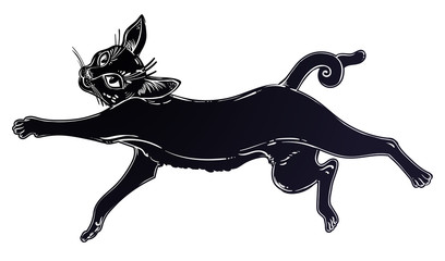 Black cat running or jumping silhouette portrait.