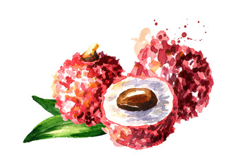 Fresh lychee fruits. Watercolor hand drawn illustration,  isolated on white background