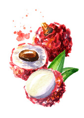 Lychee fruits. Watercolor hand drawn illustration  isolated on white background