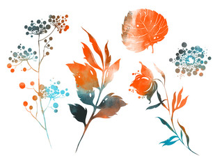 Set of flowers, leaves and herbs. digital hand drawn picture with watercolour texture. mixed media artwork.