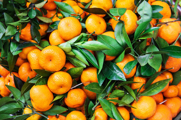 ripe tangerines at market on street