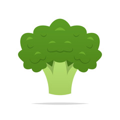 Broccoli vector isolated illustration