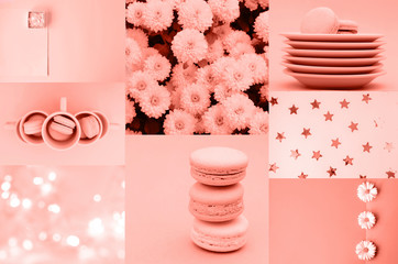A collage of photos in 2019 Living Coral shades.