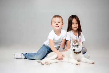 Portrait of a joyful little girl and boy having fun with siberian husky puppy on the floor at studio. The animal, friendship, love, pet, childhood, happiness, dog, lifestyle concept