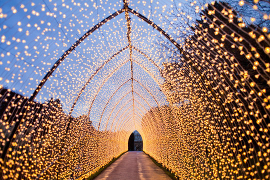Tunnel formed by Christmas lights. warm light, fairy light, lanterns creating a tunnel in the city 's Botanic garden in vinter