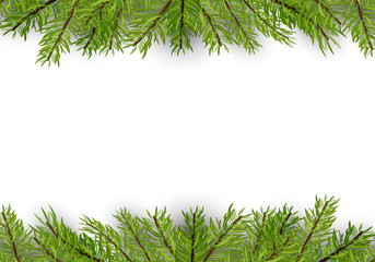 Christmas and New Year Banner with Pine Branches - Fir Branch Border