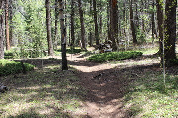 Hankins Pass Hike