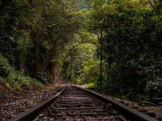 Train Tracks to Agua Calientes Peru