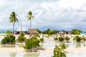 Village on South Tarawa atoll, Kiribati, Gilbert islands, Micronesia, Oceania. Thatched roof houses. Rural life, a remote paradise island under palms
