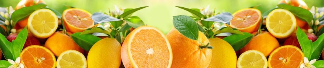 citrus fruit Wall mural
