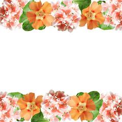 Beautiful floral background of pelargonium and purslane
