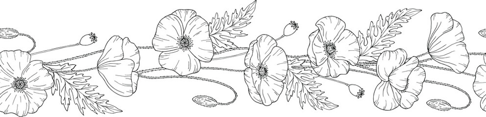 Seamless brush. Seamless border. Poppy flowers. Papáver. Stems and leaves. Hand drawn vector illustration. Monochrome black and white ink sketch. Line art.